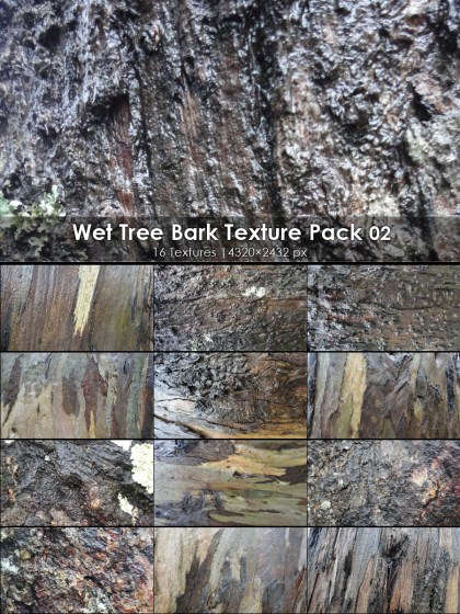 Wet Tree Bark Texture 02