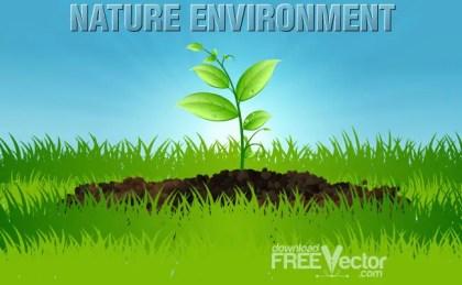 Nature Environment Free Vector