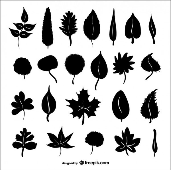 Autumn Leaves Silhouettes Free Vector