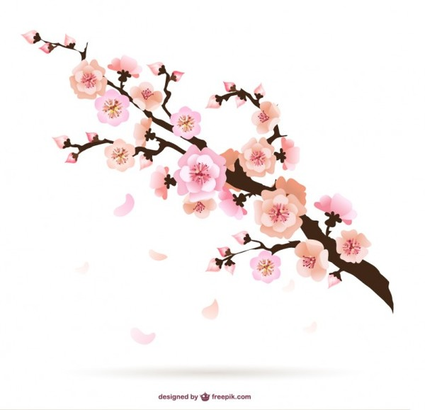 20+ Cherry Blossom Illustration  JPG