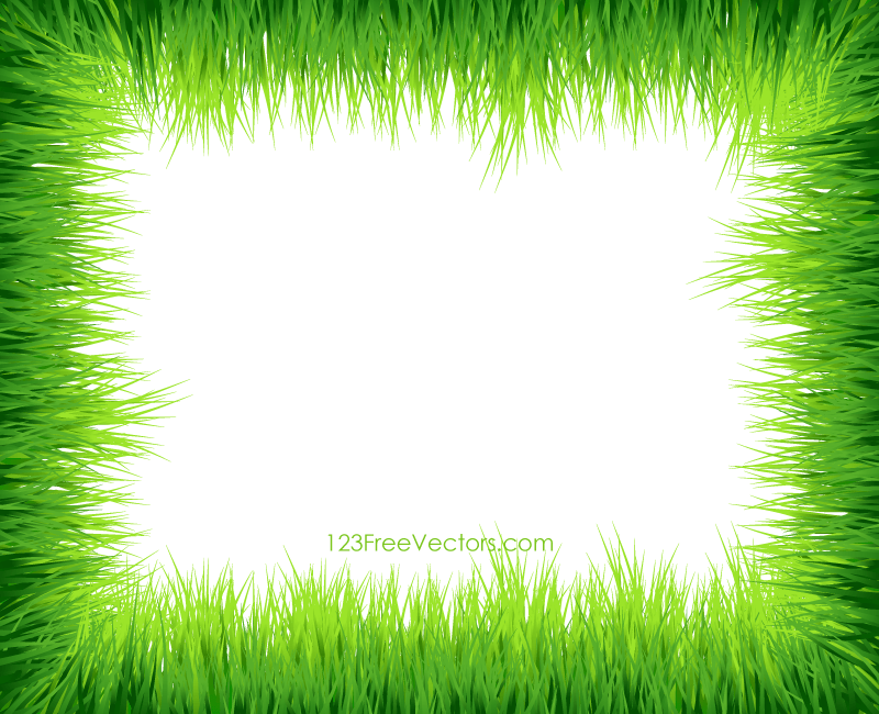 green grass vector green grass vector