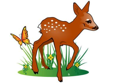 Fawn Nature Illustration