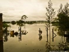 Inundaciones dado a la crecida del Río Paraná.