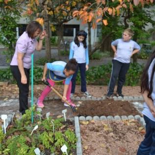 Melisa y menta fueron plantadas a inicio de mayo.