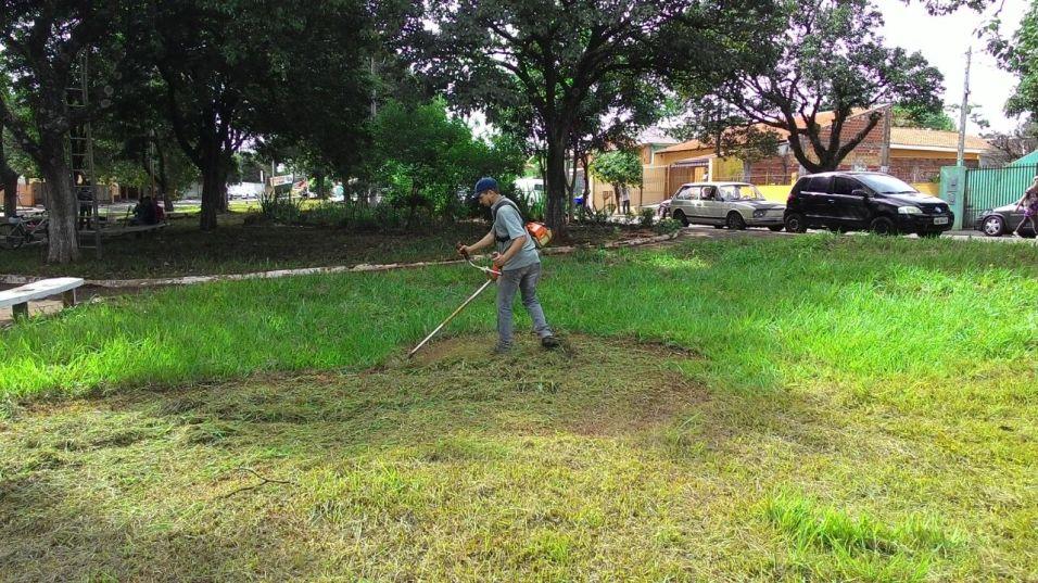 Voluntários cortaram a grama do local