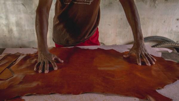 Curtume: entenda os processos da produção de couro
