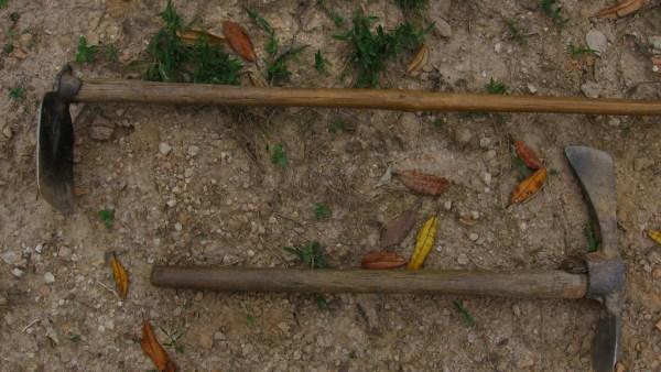 Chibanca é utilizada na agricultura e mostra versatilidade no campo