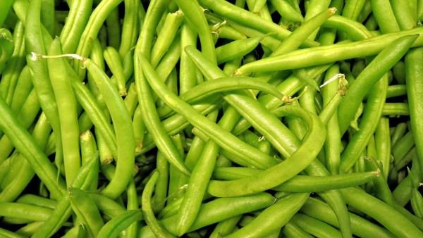 Cinturão verde e sua importante contribuição para a agricultura