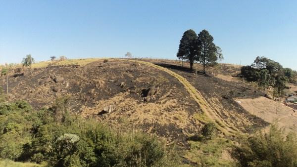 Combustão é poderosa ferramenta para as produções agrícolas
