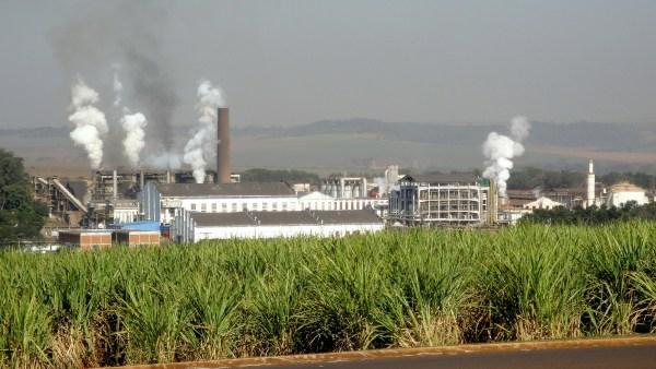Vinhaça é popular no país por ser um bom substituto do fertilizante