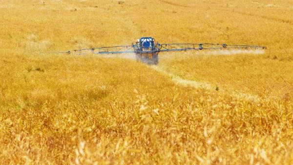 Sistemas agrícolas: as técnicas da agricultura intensiva e extensiva