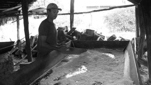 Farinha de mandioca é alimento nutritivo e importante na culinária