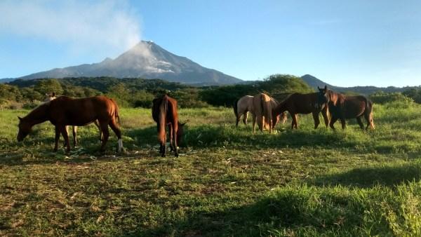 Zona rural e as vantagens de vivência e trabalho no campo