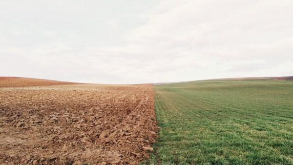 Gleba é uma medida de terra que ainda não possui infraestrutura