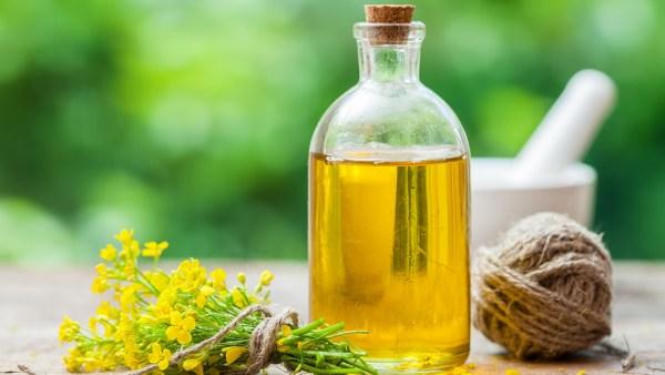 Óleo é substância líquida e viscosa útil para as mais diversas finalidades