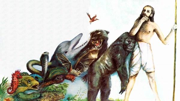 A evolução é uma das partes mais importantes da Biologia