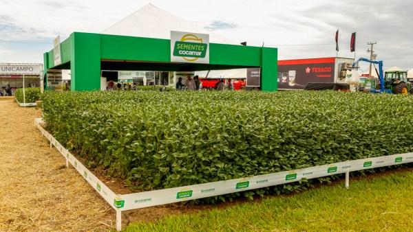 Cocamar surgiu como Cooperativa de Cafeicultores e Agropecuaristas