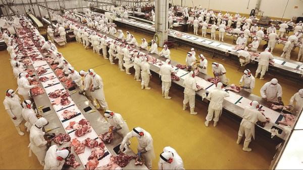 Frimesa é um dos maiores nomes do ramo alimentício brasileiro