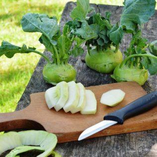 Couve-rábano é variedade nutritiva da hortaliça que parece com o repolho