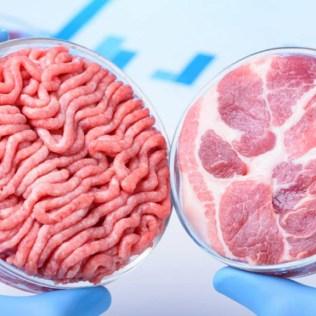 Carne de laboratório já tem data prevista para chegada no mercado