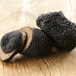 Trufa negra é uma das iguarias mais caras de todo o mundo