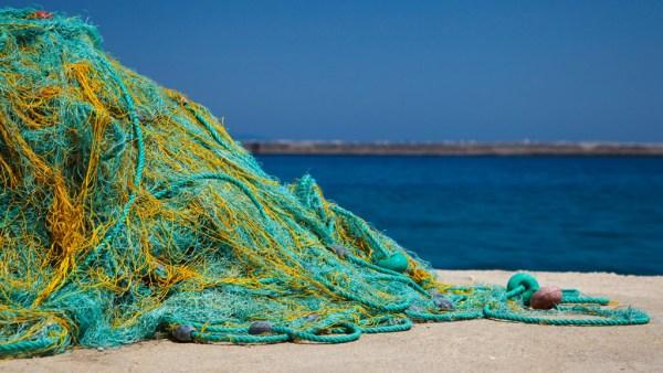 Rede de pesca: como escolher a melhor e quais as suas características?