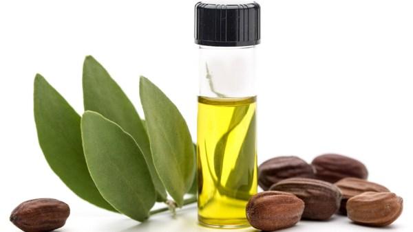 Óleo de jojoba é bom para a pele e muito usado em cosméticos