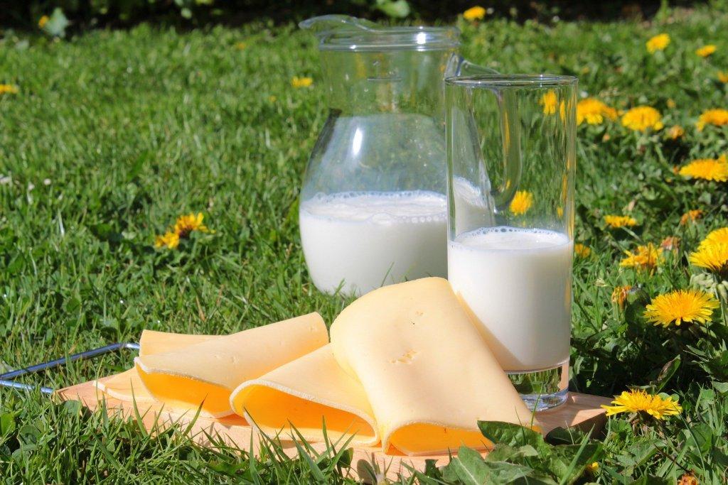 Leite e queijos também são fiscalizados pelo Dipoa.