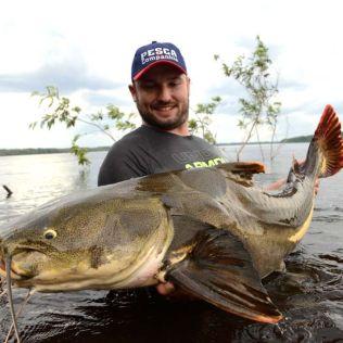 Peixe de couro é nome dado a vários peixes teleósteos