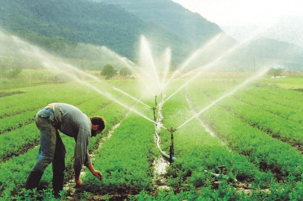 tipos de irrigação