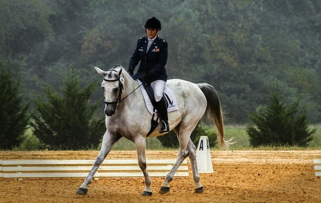 Esportes com cavalos