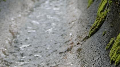 Lodo é nome dado ao sedimento próprio de terras inundadas