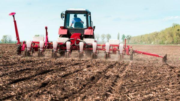 Plantadeira é ótima opção para garantir semeaduras adequadas