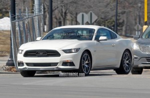 50th Anniversay Ford Mustang