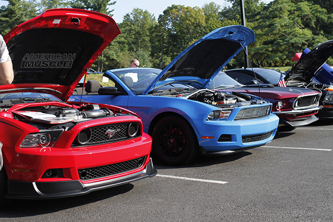 2011 - 2014 Mustang GT and V6