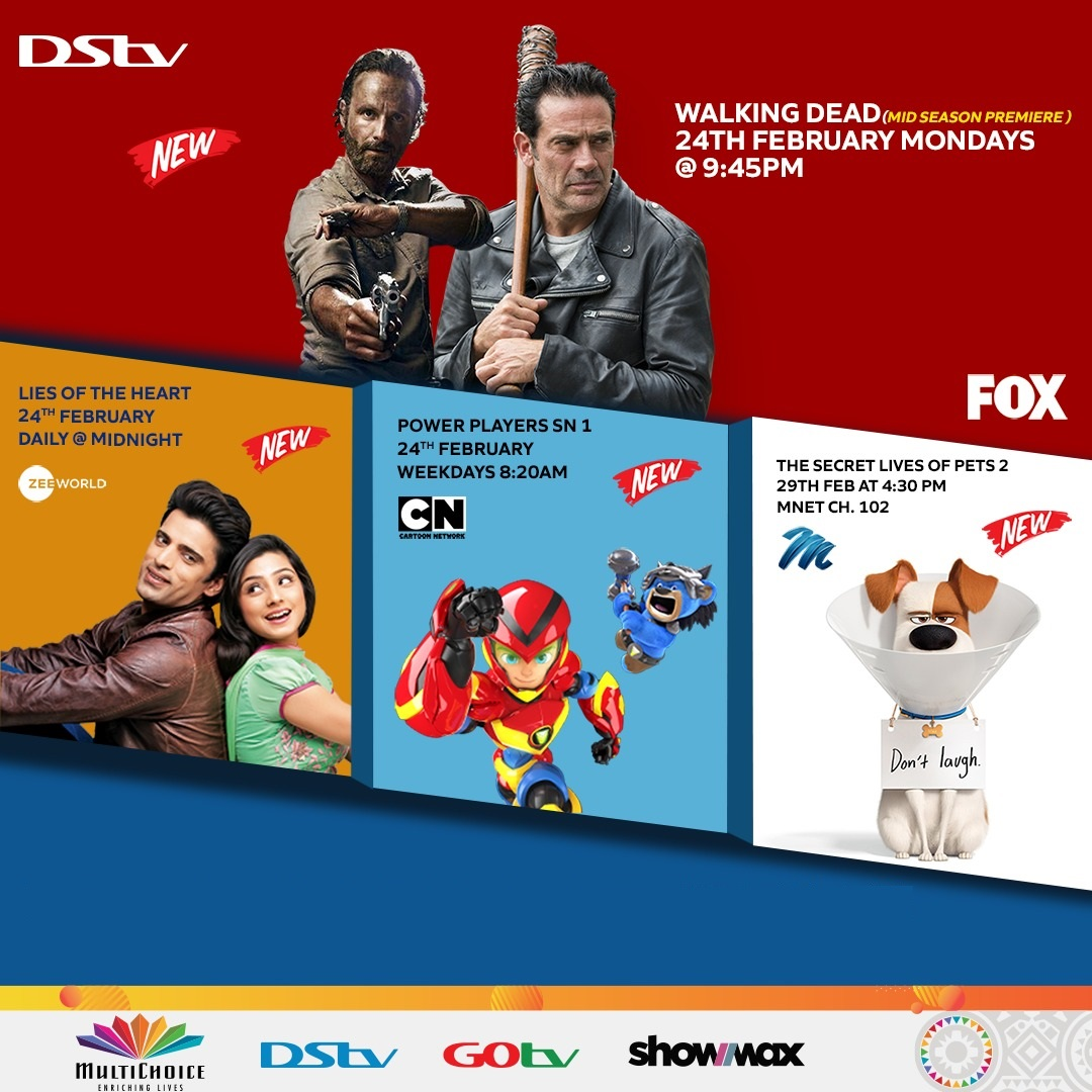 Where Education Meets Entertainment: Unmissable Kids' Content on DStv