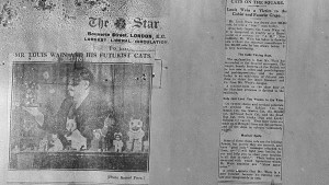 The Star newspaper clipping about Louis Wain's Futurist Cats