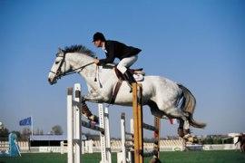 girl-horse-jumping.jpg