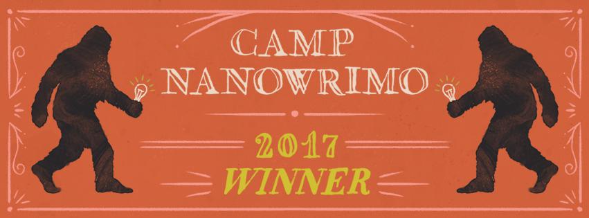 Winner 2017 - Facebook Cover