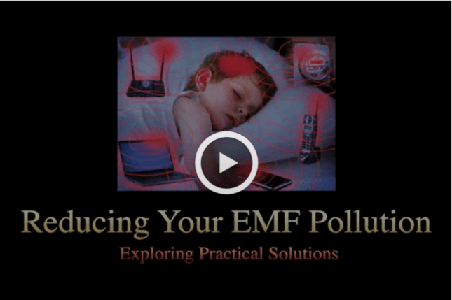 EMF Pollution Video