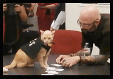 Mighty Lou & Jackson Galaxy