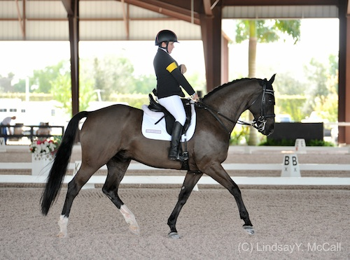 Dressage focus: Sydney Collier and Wentworth. Photo by Lindsay Y. McCall.
