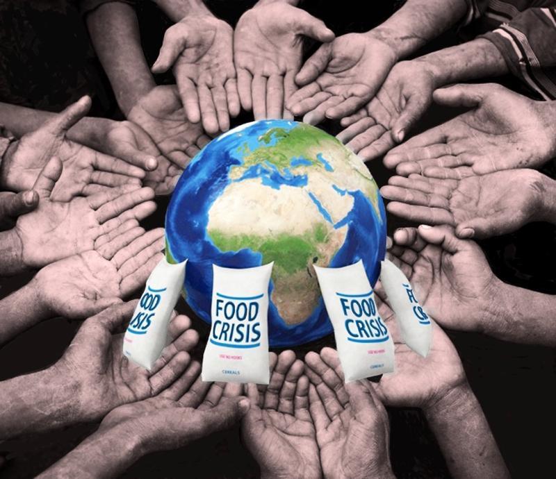 The World Food Crisis