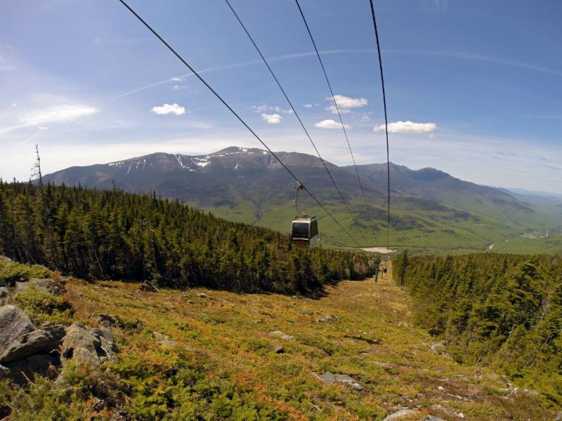 Wildcat Mountain Scenic Gondola