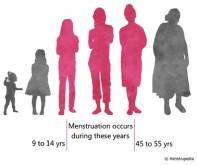 Menstruation & Wechseljahre