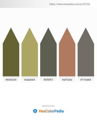 Palette image download - Dark Olive Green – Dark Khaki – Dim Gray – Sandy Brown – Dim Gray