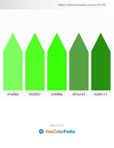 Palette image download - Pale Green – Lawn Green – Lime – Medium Sea Green – Forest Green