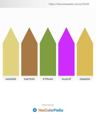 Palette image download - Burlywood – Sienna – Olive Drab – Dark Violet – Burlywood
