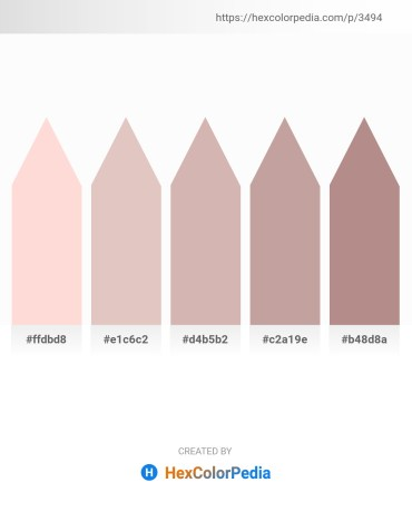 Palette image download - Misty Rose – Thistle – Rosy Brown – Rosy Brown – Rosy Brown