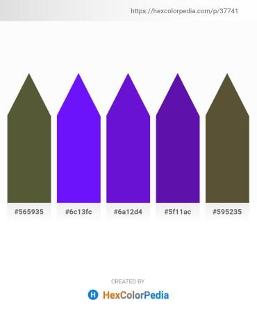 Palette image download - Dark Olive Green – Dark Violet – Blue Violet – Indigo – Dark Olive Green